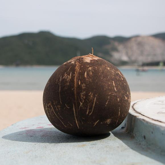 海南碳烤椰