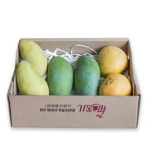 海南芒果礼盒 10斤
